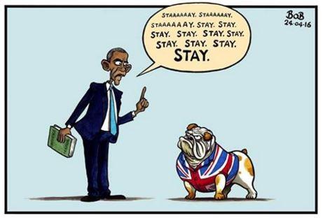 obama_stay