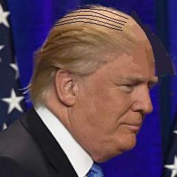 trump-dequiffed